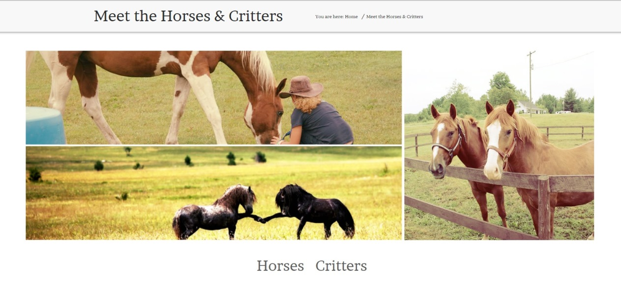 WHR Horses & Critters